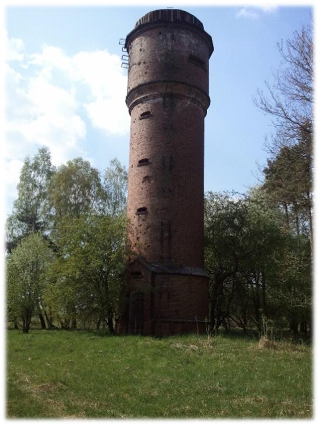 wieża1 ebiedrusko