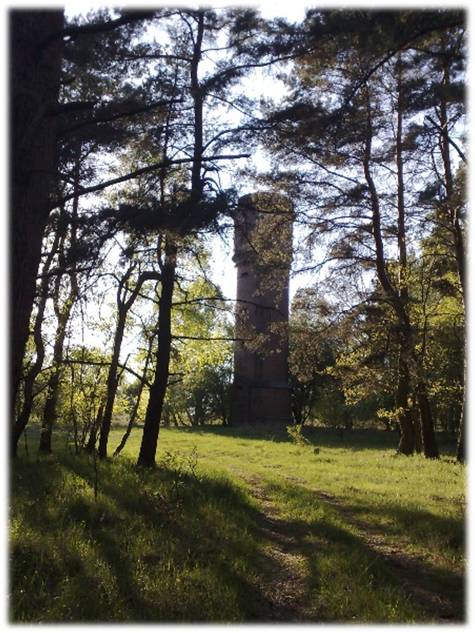 wieża2 ebiedrusko
